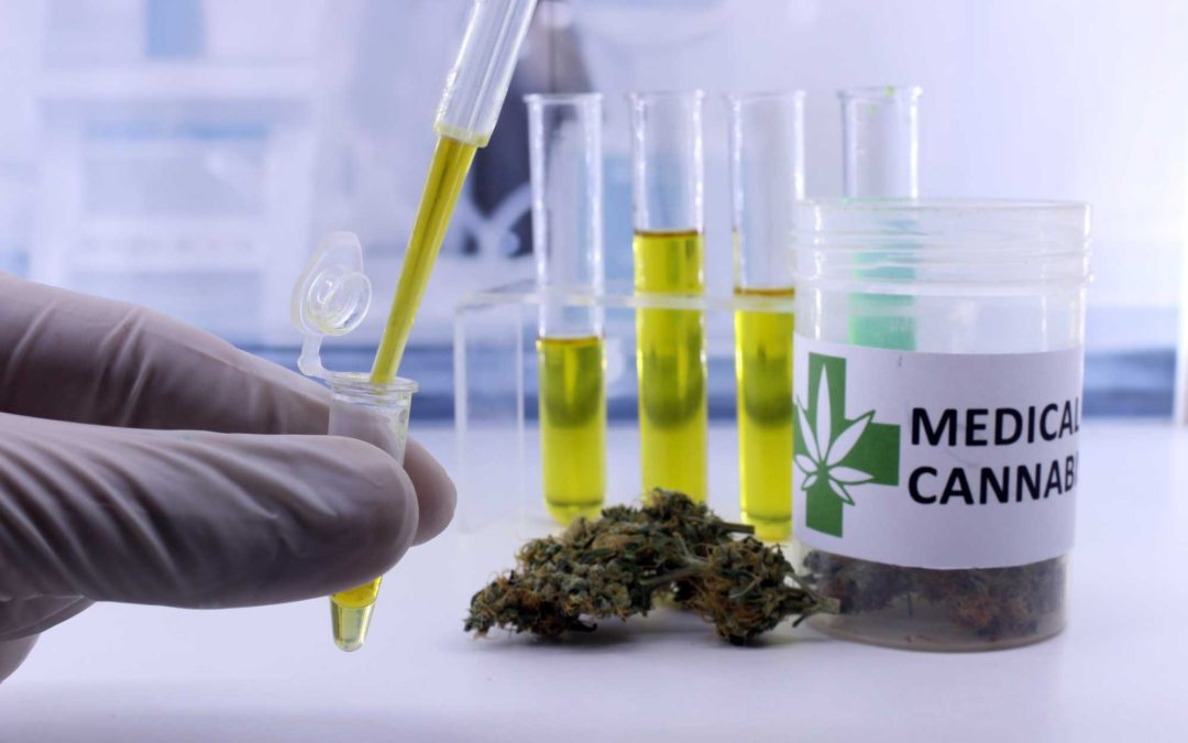 In-House Potency Testing Solutions for Cannabis & Hemp